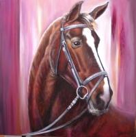 Paarden-portret-in-violet